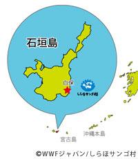 20120220shiraho1.jpg