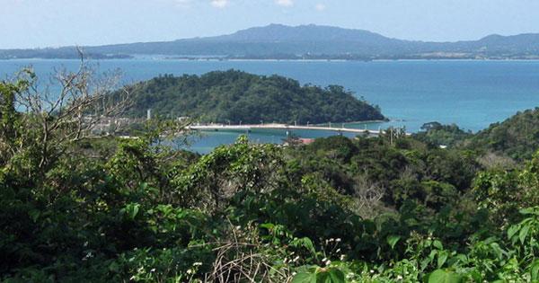 海を脅かす赤土をどう防ぐ?沖縄「やんばる」の森より