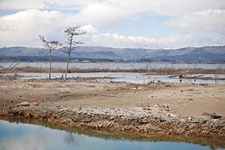 東日本大震災から5年、「暮らしと自然の復興プロジェクト」の成果と課題をふり返る