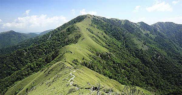 ツキノワグマのすむ森で?徳島県中部で計画される風力発電事業