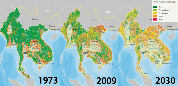 Protecting Biodiversity in the Mekong River Basin |WWFジャパン