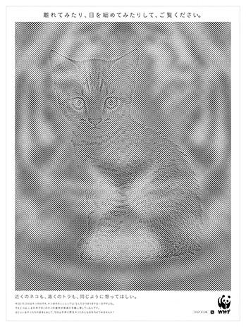 東京新聞 猫の日にあわせた広告掲載によるご支援