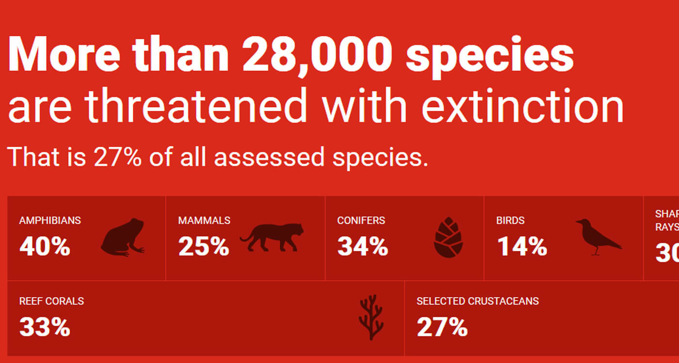 2019年「レッドリスト」更新 世界の絶滅危惧種は28,338種に |WWFジャパン