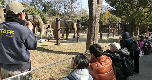 サンデー!モーニングZOO~世界野生生物の日スペシャル~実施報告