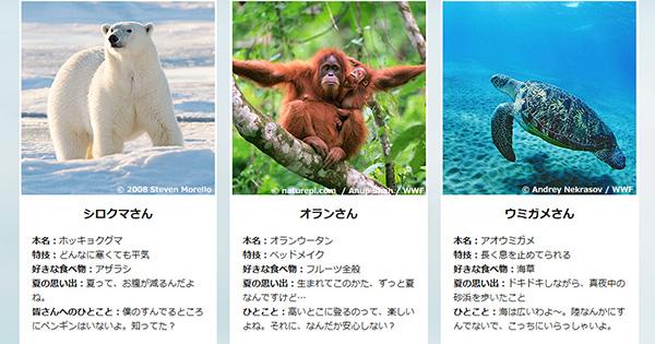 WWFジャパンの環境「共」育事業
