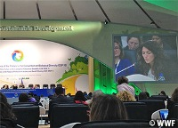 CBD-COP12が開催されています