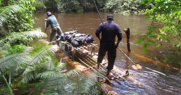 雨季の大雨で道が水没!いかだを作ってスマトラサイの調査