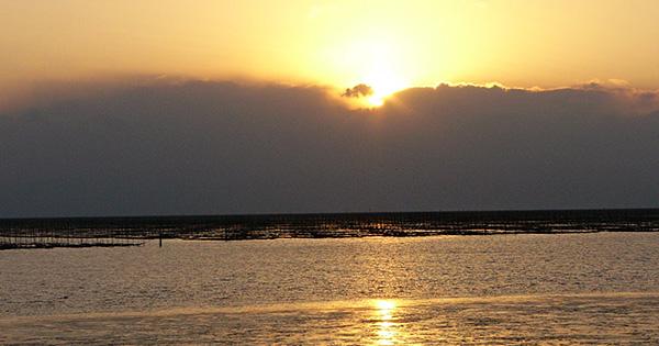 有明海・荒尾海岸で進む市民参加の干潟保全