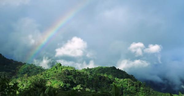 今日は山の日!「山を守る者」のメッセージ(動画あり)