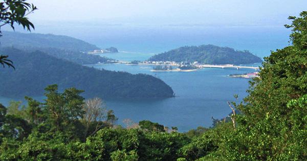 沖縄の「やんばる」で新しい国立公園が誕生