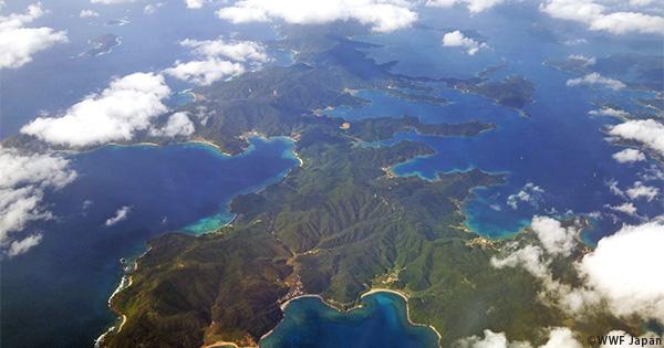 祝!奄美群島国立公園が誕生