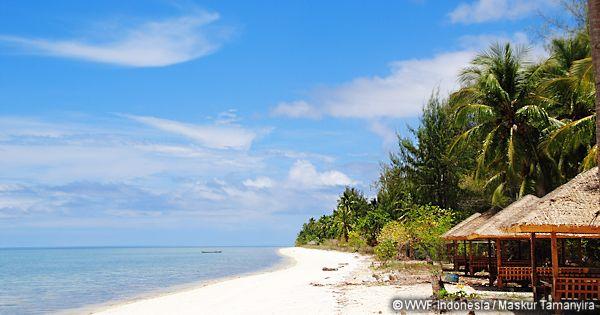 「海の日」に寄せて インドネシアより