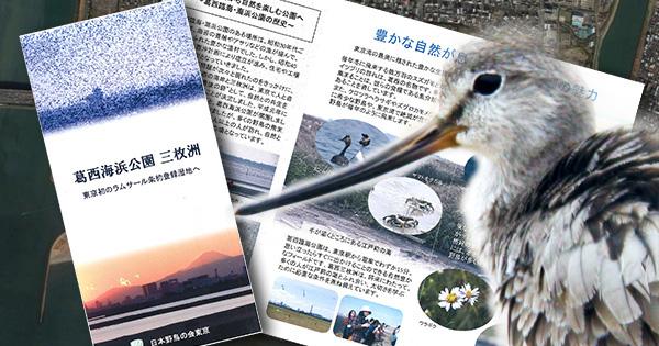 東京湾・三枚洲の海が国際的な保護区に!